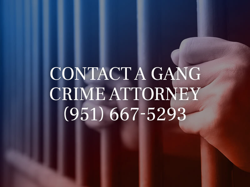 Contact a Gang Crime Attorney
